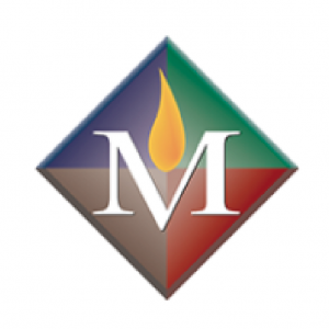 bmfa_site_sponsor_logos-02